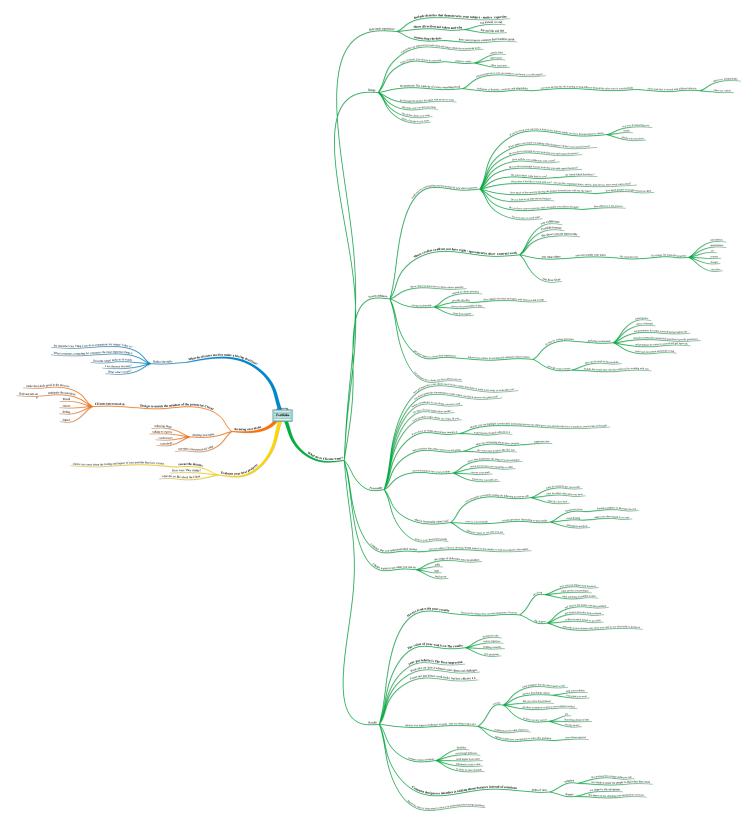 Portfolio mind map