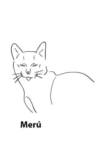 Meru-06